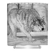 Silent Gait Shower Curtain