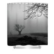 Silent Haze Shower Curtain