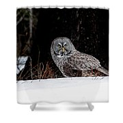 Silent Hunter Shower Curtain