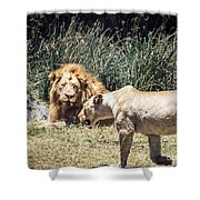 Silent Longing Shower Curtain