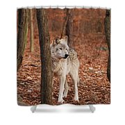 Silent One Shower Curtain