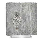 Silent Snowfall Portrait II Shower Curtain