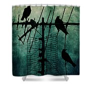 Silent Threats Shower Curtain by Andrew Paranavitana