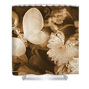 Silent Transformation Of Existence  Shower Curtain