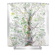 Silent Witness Shower Curtain