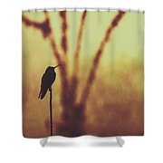 Silhouette Of A Hummingbird Against Golden Background, Mindo, Ecuador Shower Curtain