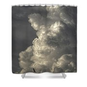Silhouette Of An Eagle Flying Among Stormy Clouds  Shower Curtain