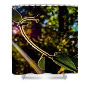 Silhouette Of Climbing Vine On A Sunny Afternoon Shower Curtain