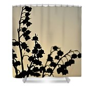 Silhouette Of Lilies Of The Valley 2 Shower Curtain