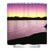 Silhouette Of Lone Cardon Cactus Plant Shower Curtain