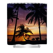 Silhouette Of Palm Tree On The Coast Shower Curtain