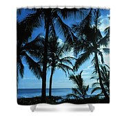 Silhouette Of Palms Shower Curtain