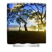 Silhouette Of Trees Shower Curtain