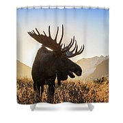 Silhouetted By The Sunrise Shower Curtain