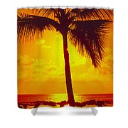 Silhouetted Palm Shower Curtain