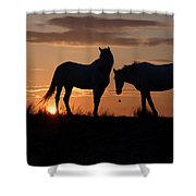 Silhouettes  Shower Curtain