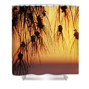 Silhouettes Shower Curtain by Rita Ariyoshi - Printscapes