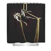 Silk Intensity Shower Curtain