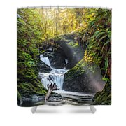 Silk Steps Shower Curtain