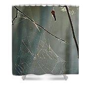 Silken Home Shower Curtain