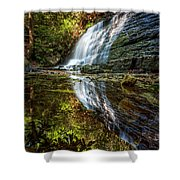 Silky Reflections Shower Curtain