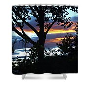 Silohuettes Of Trees Shower Curtain