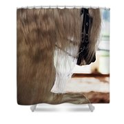 Silver Beauty 2 Shower Curtain