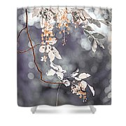 Silver Beauty.  Nature In Alien Skin Shower Curtain