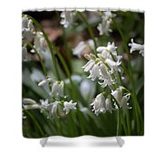 Silver Bells Shower Curtain