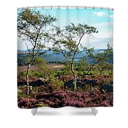 Silver Birch At Surprise View Shower Curtain
