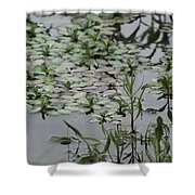 Silver Coins Shower Curtain