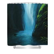 Silver Fallet Shower Curtain
