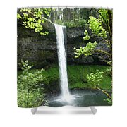 Silver Falls 1 Shower Curtain