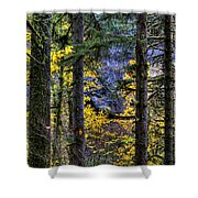 Silver Falls State Park Oregon 2 Shower Curtain