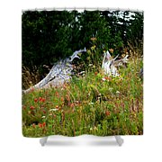 Silver Forest Meadow Shower Curtain by Christine Burdine