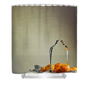 Silver Fruit Basket Shower Curtain