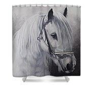 Silver-gypsy Cob Shower Curtain