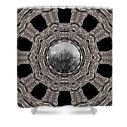 Silver Idyl Shower Curtain