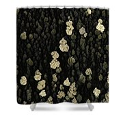 Silver Crystal Shower Curtain by Beauty of Science