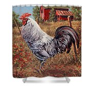 Silver Laced Rock Rooster Shower Curtain by Richard De Wolfe
