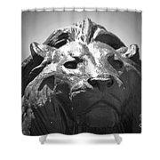 Silver Lion Shower Curtain