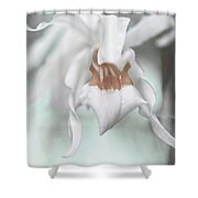 Silver Melody 1 Shower Curtain