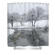 Silver Morn Shower Curtain