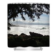 Hawaiian Silver Ocean Shower Curtain