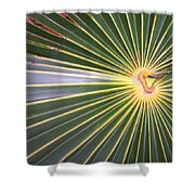 Silver Palm  Shower Curtain