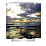 Silver Shores Shower Curtain
