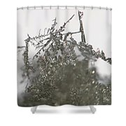 Silver Snow Shower Curtain