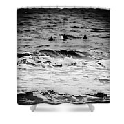 Silver Surfers Shower Curtain