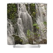 Silverdale Falls 2 Shower Curtain