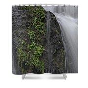 Silverdale Falls Shower Curtain
